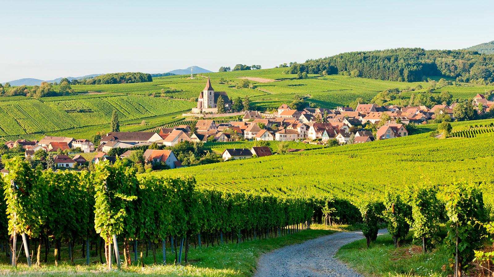 Alsace med Schwarzwald